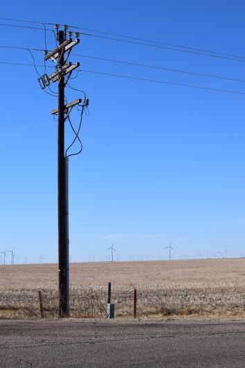 Fields of Windmills